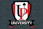 UPSWING PLO UNIVERSITY BY JNANDEZ FOR CHEAP - BEST POKER COURSES CHEAP Москва